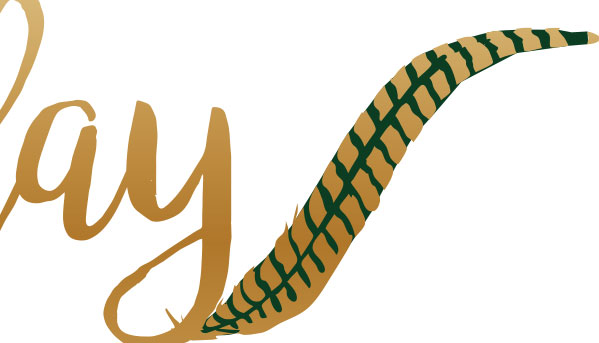 Fowl Play Millinery logo design